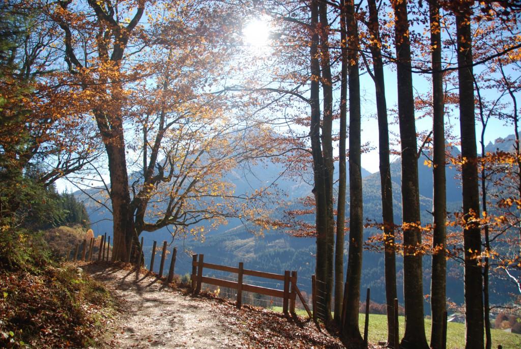 Soleleitungsweg im Herbst