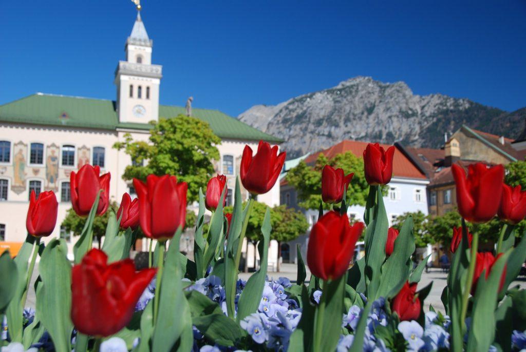 Rathausplatz im Frühjahr