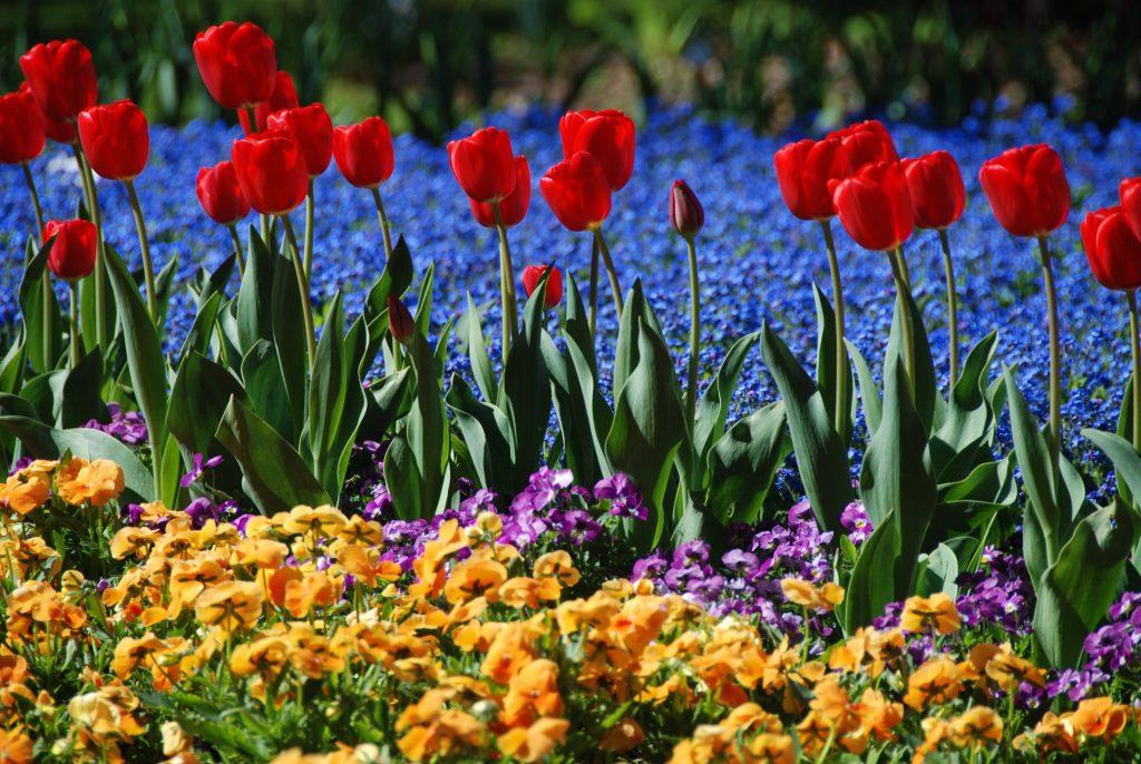 Kurgarten im Frühjahr