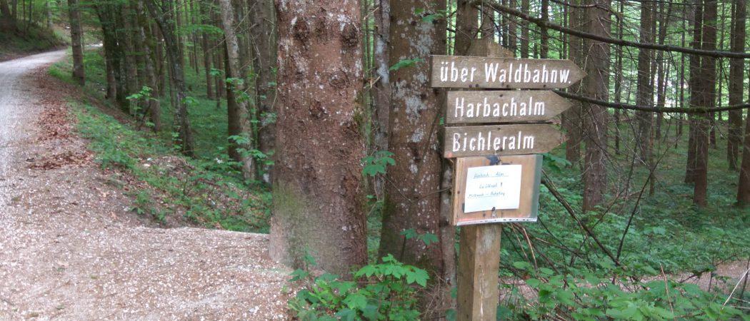 Wanderung über Waldbahnweg